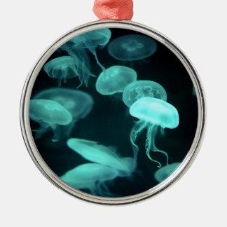 el brillar intensamente de los pescados de jalea ornamentos de reyes