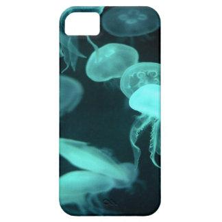 el brillar intensamente de los pescados de jalea iPhone 5 protector