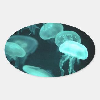el brillar intensamente de los pescados de jalea colcomanias de oval personalizadas