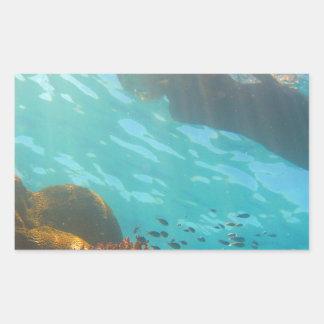 El bucear sobre un filón subacuático rectangular altavoz