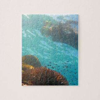 El bucear sobre un filón subacuático puzzles