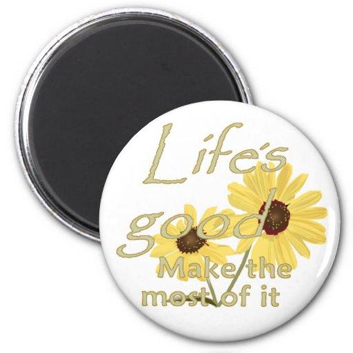 El buen imán de la vida