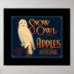 El búho Apple de la nieve del vintage del KRW da f Posters