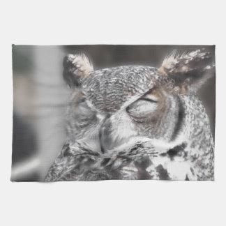 El búho con los ojos cerró dormir durante el día toallas de mano