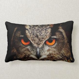 El búho hermoso con el naranja observa la almohada