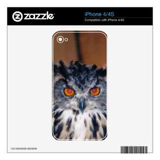El búho le esté viendo skin para el iPhone 4S