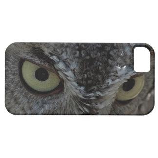 El búho observa el caso del iPhone 5 de la foto iPhone 5 Fundas