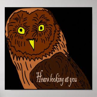 el búho oye la mirada de usted poster
