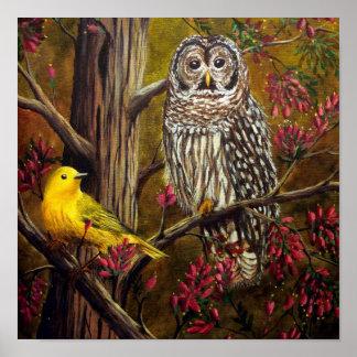 El búho y el canario póster