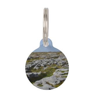 El Burren Identificador Para Mascotas
