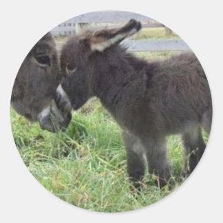 el burro más lindo pegatinas redondas
