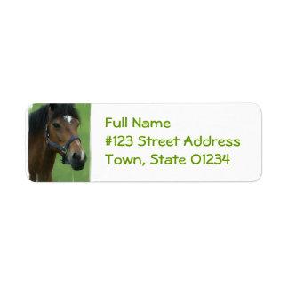 El caballo árabe representa la etiqueta del remite etiqueta de remite