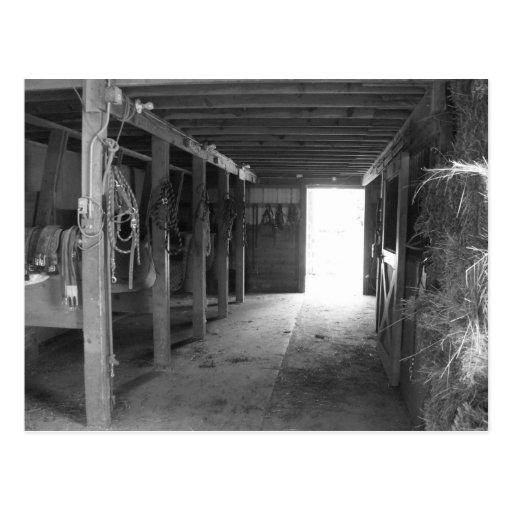 El caballo atasca en el granero, Greyscale Postal
