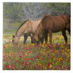 El caballo cuarto en el campo de wildflowers acerc azulejo cuadrado grande