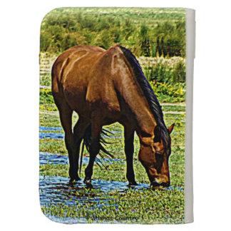 El caballo de bahía enciende la caja