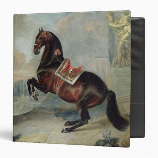 """El caballo de bahía oscuro 'Valido Carpeta 1 1/2"""""""