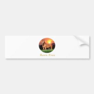 El caballo de Brown diseña puesta del sol Etiqueta De Parachoque