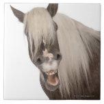El caballo de Comtois es un caballo de proyecto -  Azulejo Cuadrado Grande