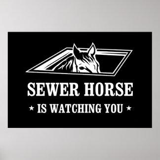 El caballo de la alcantarilla le está mirando póster