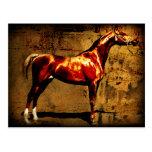 El caballo de la castaña tarjetas postales