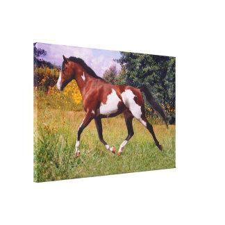 El caballo de la pintura de la primavera estiró la impresión en lienzo estirada