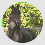 El caballo de reyes Stickers Pegatinas Redondas