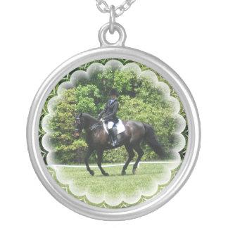 El caballo del Dressage prueba el collar