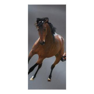 """El caballo del vaquero llamó Riboking Folleto Publicitario 4"""" X 9"""""""