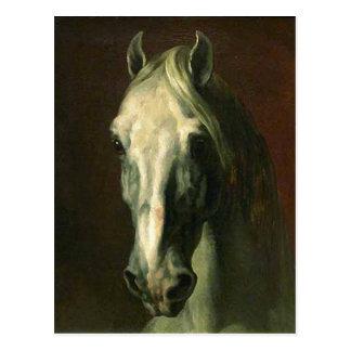 El caballo del vintage postal