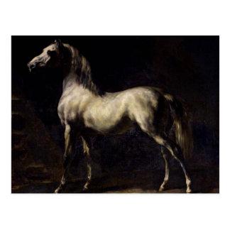 El caballo del vintage postales
