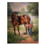 El caballo del vintage tarjetas postales