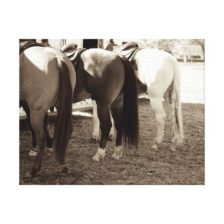 El caballo empalma la foto de la lona lienzo envuelto para galerias