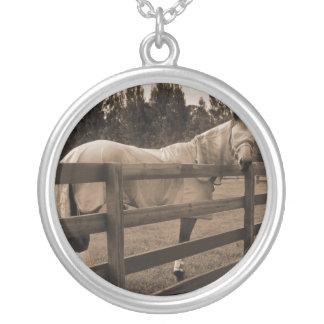 El caballo en mosca viste la sepia que mira detrás collar plateado
