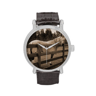 El caballo en mosca viste la sepia que mira detrás relojes de pulsera
