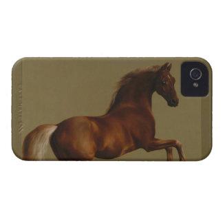 El caballo espectacular ahora protege iPhone4 cont Case-Mate iPhone 4 Carcasas