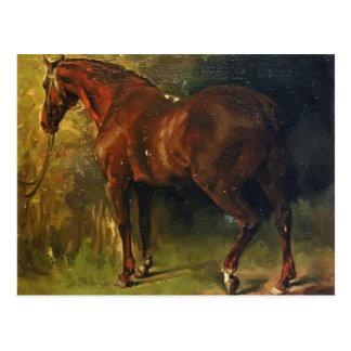 El caballo inglés de M. Duval de Gustave Courbet Postales