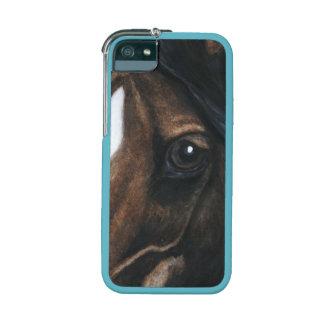 el caballo le está mirando caso del iPhone 5
