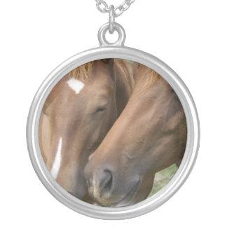 El caballo Nuzzle el collar
