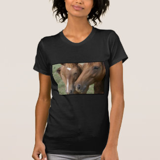 El caballo Nuzzle la camiseta cabida