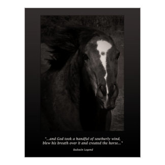 El caballo posters