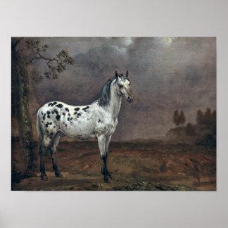 El caballo picazo, 1653 impresiones