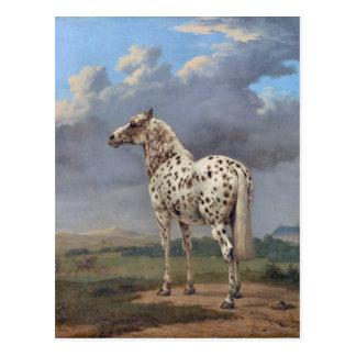 El caballo picazo