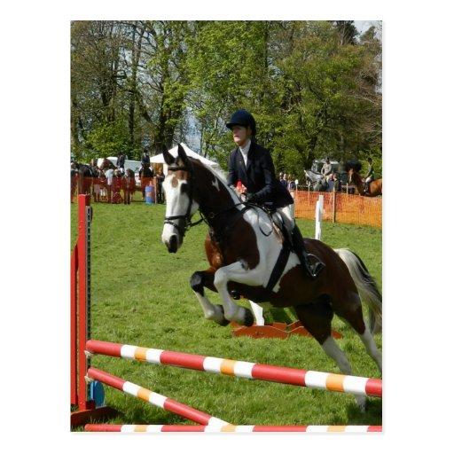 el caballo que salta haciendo frente a desafíos tarjeta postal
