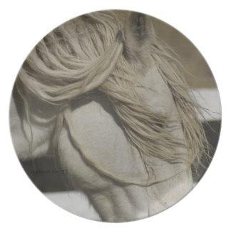 El caballo soña la placa plato para fiesta