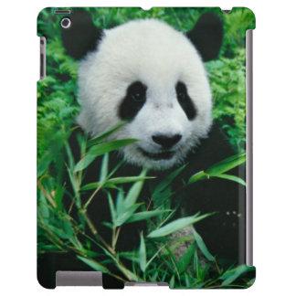 El cachorro de la panda gigante come el bambú en e funda para iPad