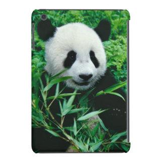 El cachorro de la panda gigante come el bambú en fundas de iPad mini
