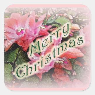 El cactus de navidad de las Felices Navidad Pegatina Cuadrada