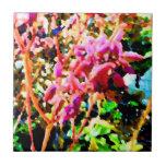 el cactus floral abstracto florece rosa azulejos ceramicos