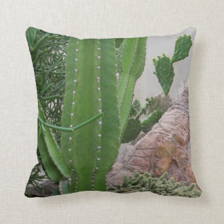 El cactus oscila paisaje del sudoeste de los cojines