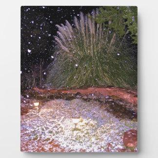 el caer de la nieve placas con fotos